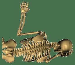 Honest skeleton! sticker #3673730