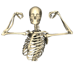 Honest skeleton! sticker #3673734