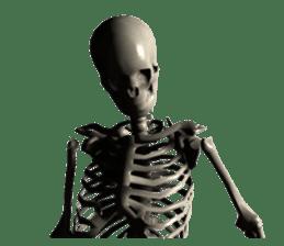 Honest skeleton! sticker #3673740