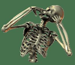 Honest skeleton! sticker #3673743
