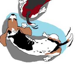 Very cute sisters of Basset Hound. sticker #3674526