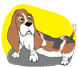 Very cute sisters of Basset Hound. sticker #3674537