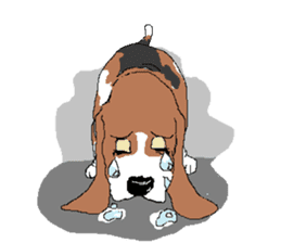 Very cute sisters of Basset Hound. sticker #3674539