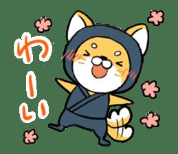 Shibainu Ninja sticker #3692770