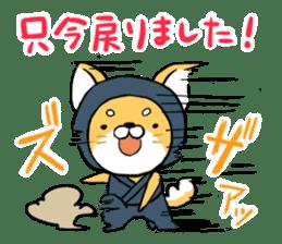 Shibainu Ninja sticker #3692776