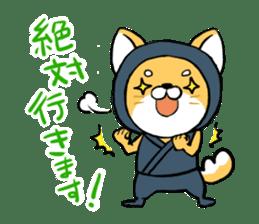 Shibainu Ninja sticker #3692778