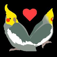 Lovely Cockatiel!!