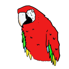 Mr.Parrot.
