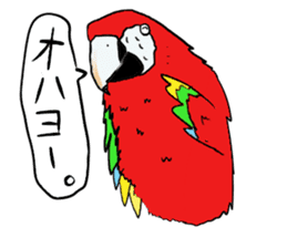 Mr.Parrot. sticker #3759887
