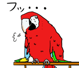 Mr.Parrot. sticker #3759917