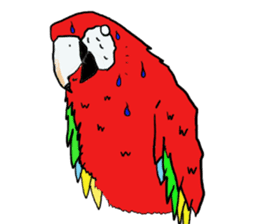 Mr.Parrot. sticker #3759922