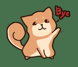 Chibi Shiba Kun sticker #3770352