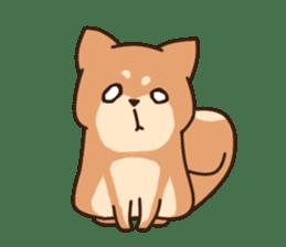 Chibi Shiba Kun sticker #3770354