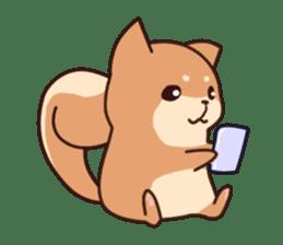 Chibi Shiba Kun sticker #3770385