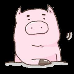 wonderful pig