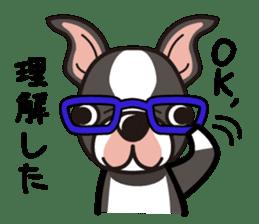 iinu - Boston Terrier sticker #3812532