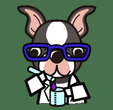 iinu - Boston Terrier sticker #3812543