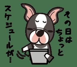 iinu - Boston Terrier sticker #3812549