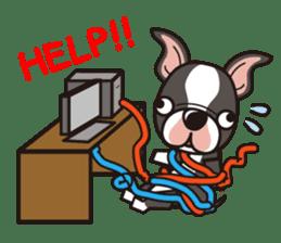 iinu - Boston Terrier sticker #3812550