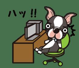 iinu - Boston Terrier sticker #3812556