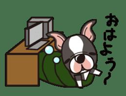 iinu - Boston Terrier sticker #3812561