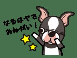 iinu - Boston Terrier sticker #3812562
