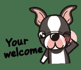 iinu - Boston Terrier sticker #3812564