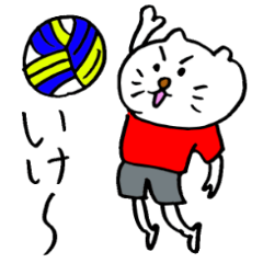 The Mokkun's sports cat.