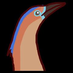 Big Bird (Gorsachius melanolophus)