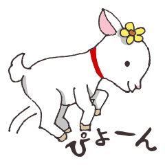 Goat heart _Kansai version