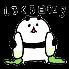 shirokurobiyori3
