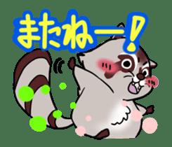 Cheerful raccoon sticker #3949574