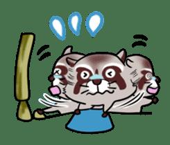 Cheerful raccoon sticker #3949581