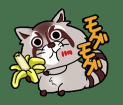 Cheerful raccoon sticker #3949587