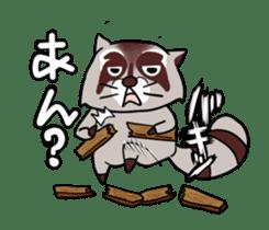 Cheerful raccoon sticker #3949594