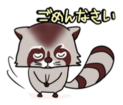 Cheerful raccoon sticker #3949603