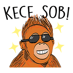 Baby Orangutan (Indonesian)