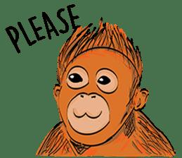Baby Orangutan (Indonesian) sticker #3950926