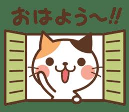 Cool cat & Loose cat sticker #3957047
