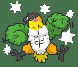 Pionites leucogaster&Black-headed Caique sticker #3978600