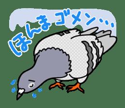 Pigeon Life sticker #4045660