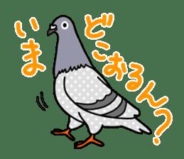Pigeon Life sticker #4045662