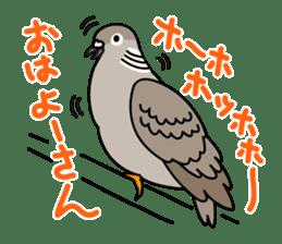 Pigeon Life sticker #4045666