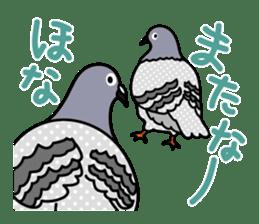 Pigeon Life sticker #4045670