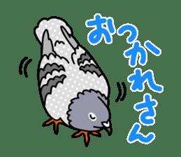 Pigeon Life sticker #4045671