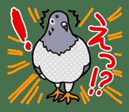 Pigeon Life sticker #4045674