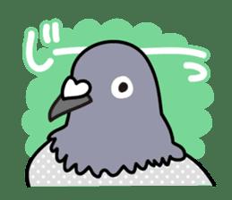 Pigeon Life sticker #4045676