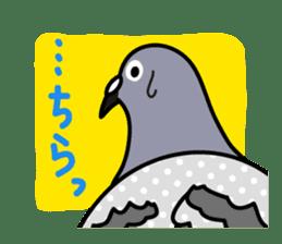 Pigeon Life sticker #4045677