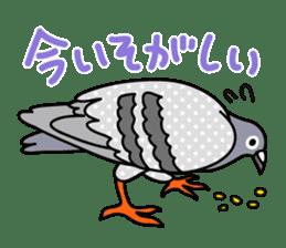 Pigeon Life sticker #4045678