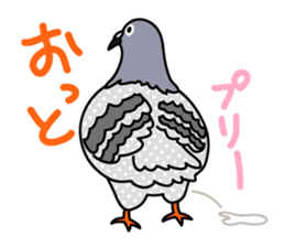 Pigeon Life sticker #4045692